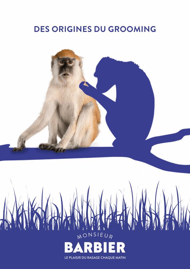 Dans notre dictionnaire du rasage, nous découvrons l'origine du grooming