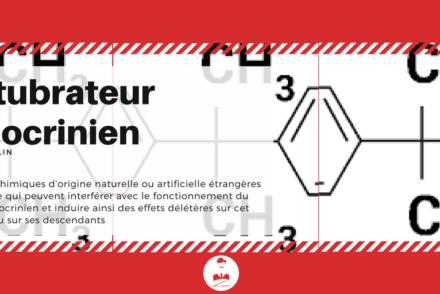 Définition Perturbateur endocrinien- Monsieur Barbier
