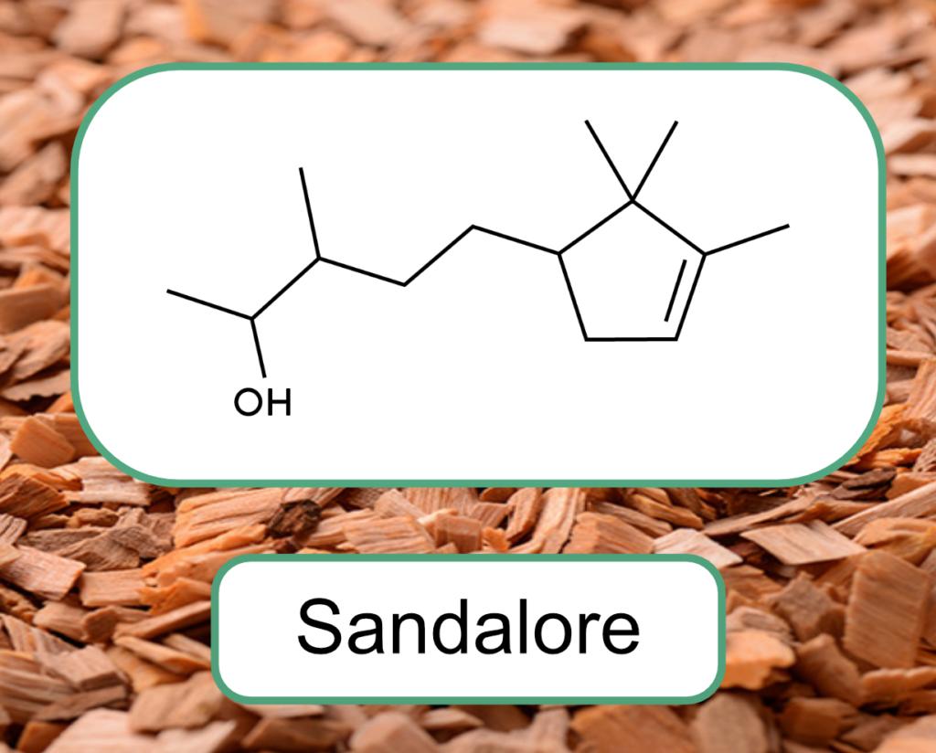 Sandalore - Composé synthétique imitant la structure de l'activateur OR2AT4, naturellement présent dans l'huile de bois de santal, et utilisé dans l'évaluation de l'efficacité de l'huile de bois de santal sur la pousse des cheveux et des phanères.