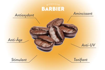 Culture barbier propriétés caféine