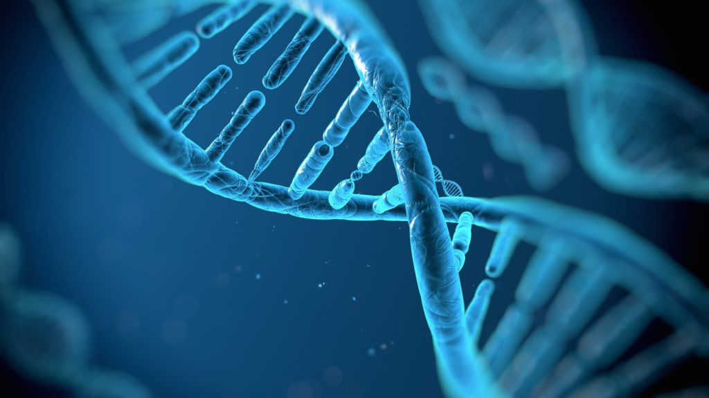 Cheveux blancs DNA